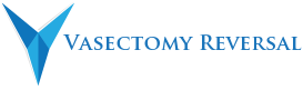 Affordable Vasectomy Reversals